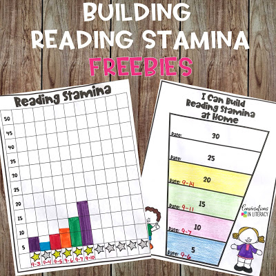 Setting Up Routines and Building Reading Stamina