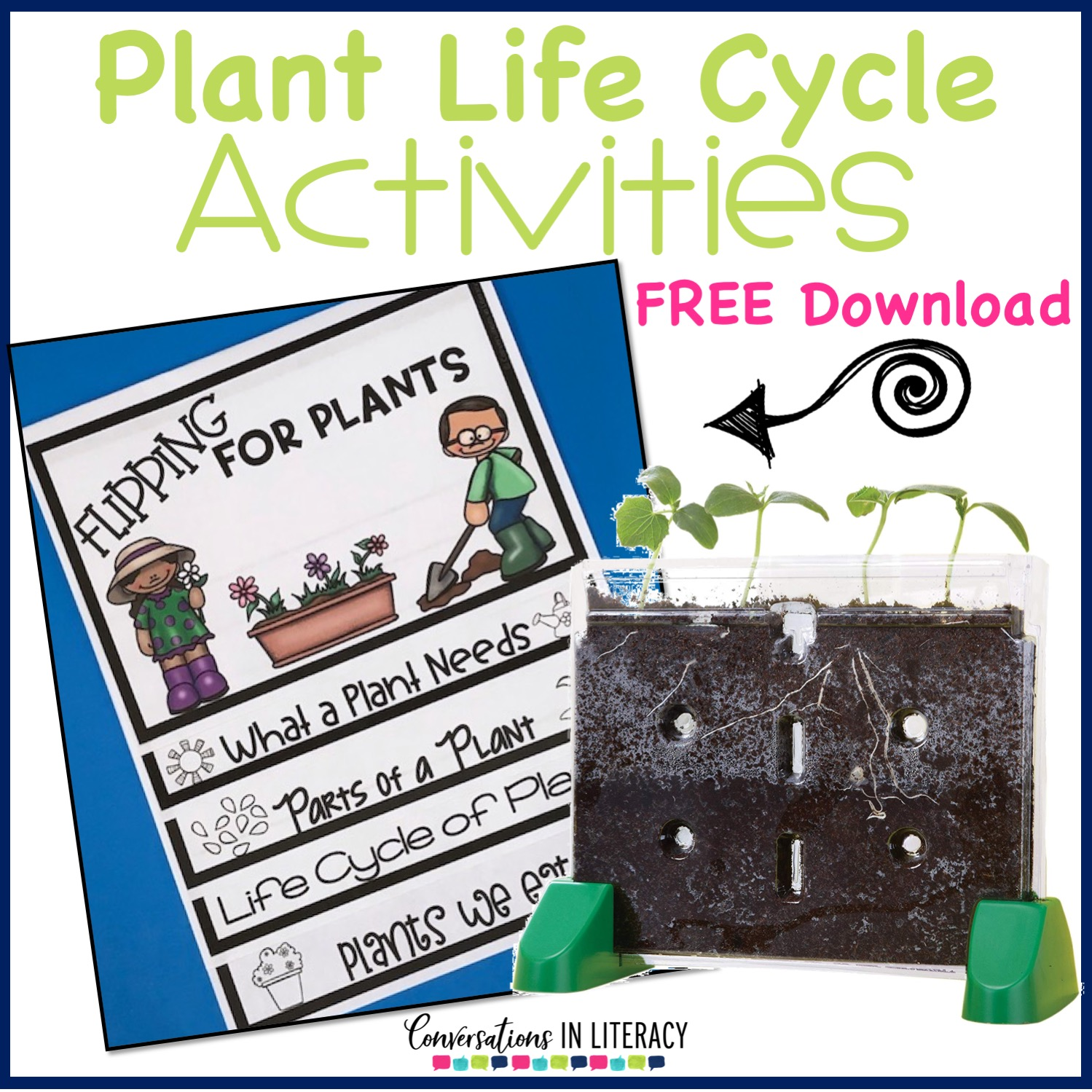 photo regarding Plant Life Cycle Printable identified as Plant Existence Cycle Things to do - Discussions within Literacy